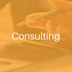 Digital Services - Consulting